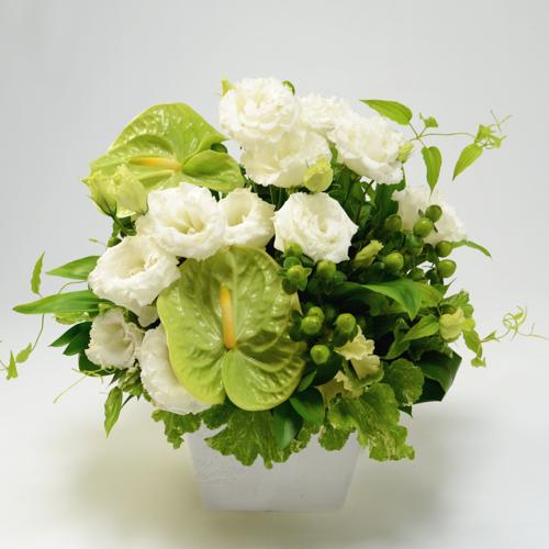 白とグリーンのアレンジメント<ライム>